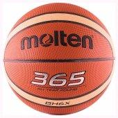 Basket Topu (365)
