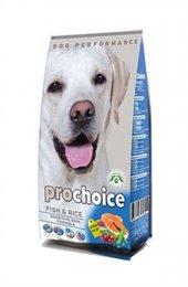 Pro Choice Sensitive Skin (Hassas Deriye Sahip Köpekler İçin) Bal