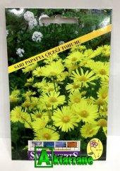 Sarı Papatya Çiçeği Tohumu Paket
