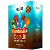 Esila Fantastik Dörtlü Yaz Çayı 45 Süzen Poşet...