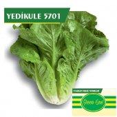 Fide Sepeti Yedikule Marul (5701) Tohumu 10grlık 1 Paket