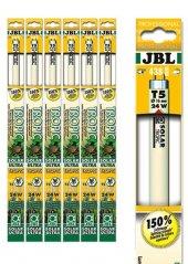 Jbl Solar Tropic T5 Ultra 742 Mm 35w 4000k