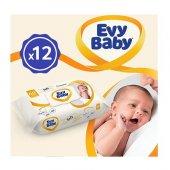 Evy Baby Islak Havlu Soft 12li Aylık Ekonomik Pake...