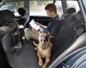 Oto Köpek Örtüsü Kedi Köpek Koltuk Kılıfı Örtüsü Şiltesi Araç Oto