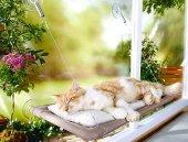 Sunny Seat Cama Asılan Kedi Yatağı