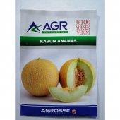 Agrosse Ananas Kavun Tohumu 10 Gr