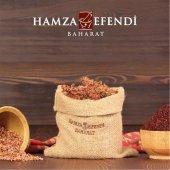 Hamza Efendi Baharat Sumak 560 Gram