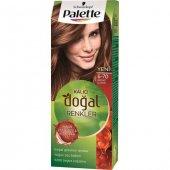 Palette Natural 6.70 Bronz Kahve Kalıcı Saç Boyası