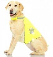 Pawise Fosforlu Köpek Yeleği Medium 42*66 Cm