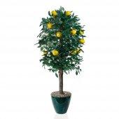 Limon Ağacı Yapay Ağaç