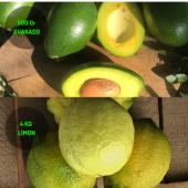 4 Kg Limon & (3 Adet)500 Gram Avakado Dalından Taze